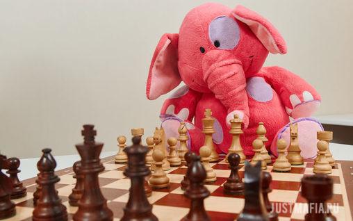 Игрушечный слоник за шахматной доской